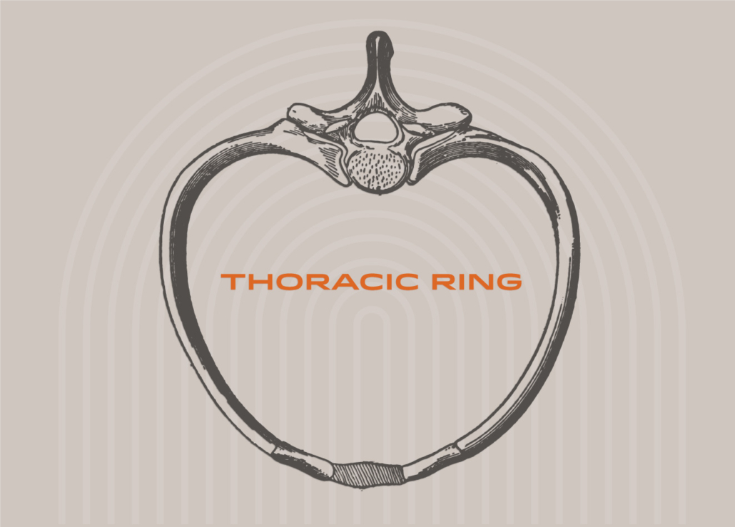 Bodywise Physical Therapy Portland Thoracic Ring approach physical therapy